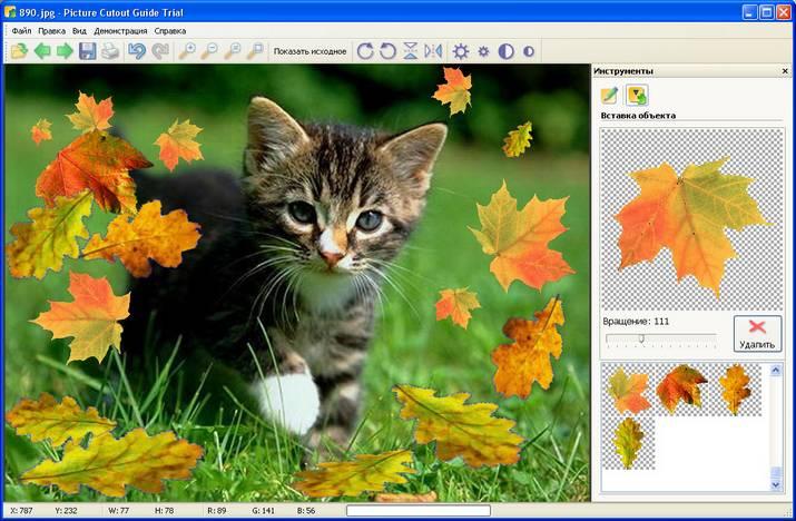 Фотомонтаж, добавление объектов на фото