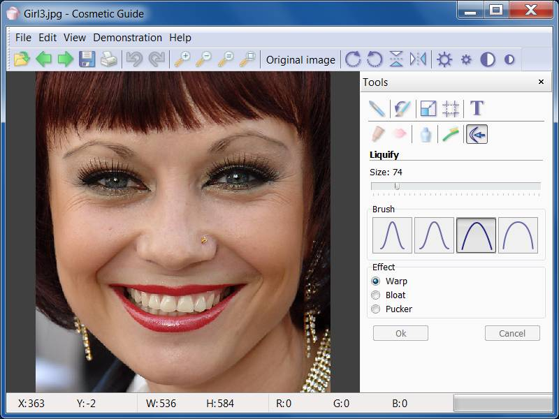 Click to view Cosmetic Guide 2.0.1 screenshot