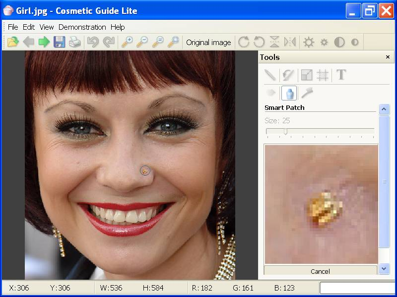 Click to view Cosmetic Guide Lite 1.4.1 screenshot